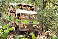 Jungle Tour Playa del Carmen