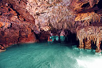 Cenotes of Playa del Carmen