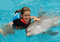 Playa del Carmen Dolphin Encounter