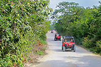 Playa del Carmen Jungle Buggy Tour