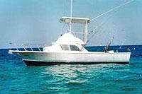 saltwater fly fishing playa del carmen