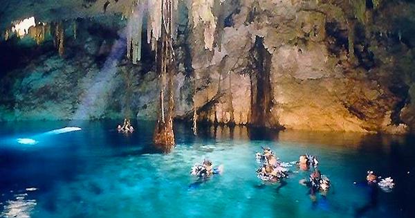 Cenote Tour Playa Del Carmen